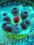 Смешивание плодоовощ от заморозка стоковое изображение rf
