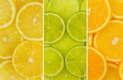 Смешивание плодоовощ лимона, известки и оранжевого плодоовощ Стоковая Фотография RF