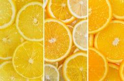 Смешивание плодоовощ лимона и оранжевого плодоовощ Стоковая Фотография RF