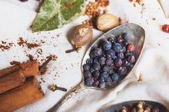 Смешивание различных специй и трав, кашевар и ингридиенты кухни на таблице с оформлением лист и плодоовощ залива Стоковые Изображения