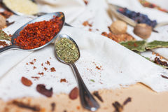 Смешивание различных специй и трав, кашевар и ингридиенты кухни на таблице с оформлением лист и плодоовощ залива Стоковые Изображения RF