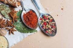Смешивание различных специй и трав, кашевар и ингридиенты кухни на таблице с оформлением лист и плодоовощ залива Стоковая Фотография RF