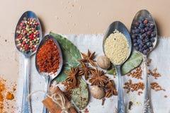 Смешивание различных специй и трав, кашевар и ингридиенты кухни на таблице с оформлением лист и плодоовощ залива Стоковая Фотография