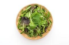 Смешивание салата с салатом rucola, frisee, radicchio и овечки Стоковые Фотографии RF