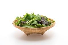 Смешивание салата с салатом rucola, frisee, radicchio и овечки Стоковое Изображение