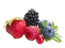 Смешивание свежих ягод стоковое изображение rf