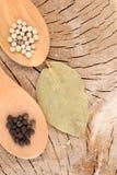 Смешивание специй на деревянной предпосылке Стоковые Фотографии RF
