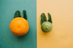 Смешивание цитруса от апельсина и известки в форме кролика или зайца с ушами мяты Стоковое Изображение
