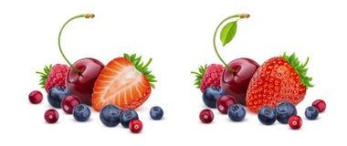 Смешивание ягоды изолированное на белой предпосылке, куче свежих диких ягод стоковые изображения rf