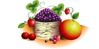 смешивание ягоды иллюстрация вектора