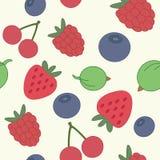 Смешивание ягоды картины Стоковая Фотография RF