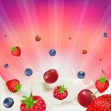 смешивание ягоды Стоковое Изображение