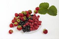 Смешивание ягоды стоковые фото