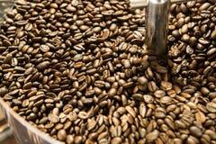 Смешивая зажаренный в духовке кофе Стоковое Изображение