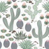 Смешная безшовная картина с кактусом тропическое предпосылки экзотическое Стоковые Изображения