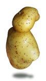 смешная картошка Стоковая Фотография