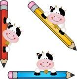 Смешная корова с карандашем Стоковое Изображение