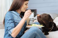 Смешная милая девушка дразня ее собаку Стоковые Фото