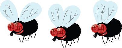 Смешная муха летания иллюстрация штока