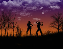 Смешная ноча Стоковые Фото
