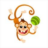 смешная обезьяна Стоковое Фото
