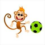 смешная обезьяна Стоковые Изображения RF