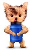 Смешная собака держа контейнер с питанием спорта бесплатная иллюстрация