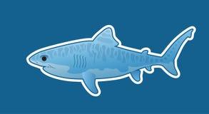 Смешная тигровая акула Стоковые Фото