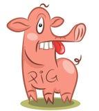 Смешная тупоумная свинья бесплатная иллюстрация