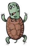 смешная черепаха Стоковая Фотография RF
