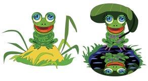 Смешная лягушка на холме и пруде Стоковое Изображение