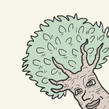 Смешное дерево Стоковые Фото