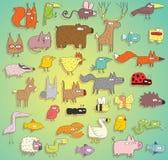 Смешное собрание животных в цветах, с планами и тенями Стоковое фото RF