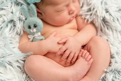 Смешное сонное newborn удерживание немногое серая игрушка, крупный план стоковое изображение rf