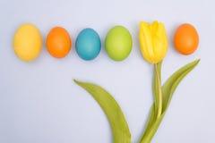 Смешное фото пестротканых пасхальных яя против равномерного backgr Стоковое Изображение RF