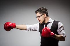Смешной бизнесмен боксера Стоковые Изображения RF