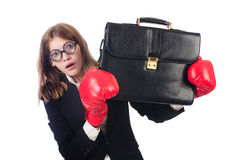 Смешной боксер Стоковое Фото