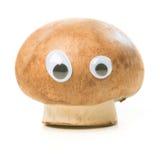 Смешной гриб с глазами Стоковые Изображения RF
