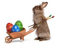 Смешной кролик зайчика пасхи с тачкой и некоторым пасхальным яйцом Стоковые Фото