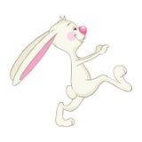смешной кролик Стоковые Изображения