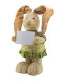Смешной кролик. стоковое изображение rf