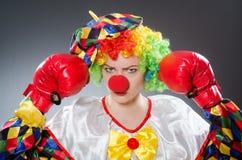 Смешной клоун с перчатками бокса Стоковые Фотографии RF