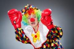 Смешной клоун с перчатками бокса Стоковая Фотография RF