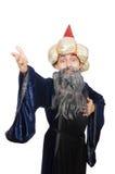 Смешной мудрый изолированный волшебник Стоковые Фото