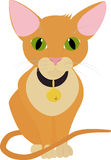 Смешной оранжевый кот при большие зеленые глаза изолированные на белизне Бесплатная Иллюстрация