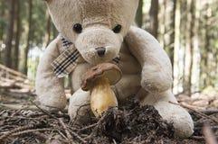 Смешной плюшевый медвежонок выбирая гриб в лесе Стоковая Фотография