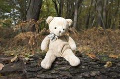 Смешной плюшевый медвежонок сидя на деревянной расшиве Стоковое Изображение RF