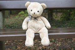 Смешной плюшевый медвежонок сидя на деревянной скамье Стоковые Фото