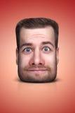 Смешной портрет шаржа Стоковые Фотографии RF