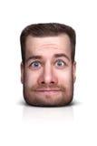 Смешной портрет шаржа Стоковое фото RF